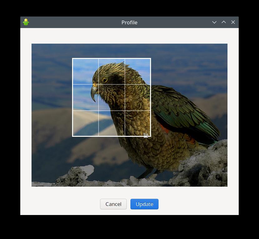 Nouvelle fenêtre de profil Gajim : sélecteur d'image